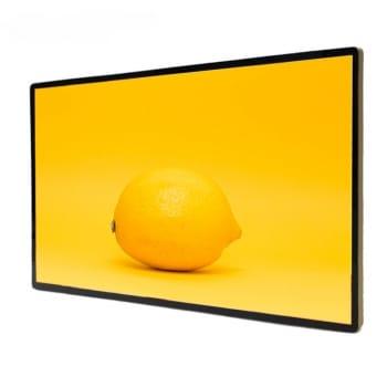 43 inch Touch Screen Module