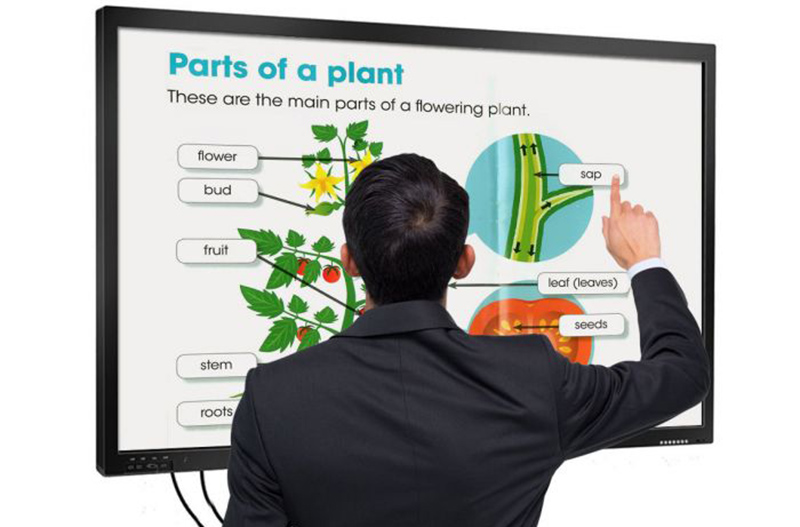 55 inch touch screen whiteboard