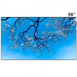 LG 98 inch 120Hz 4K 500 nit LCD Panel Manufacturers - LD980DQD-FGM1